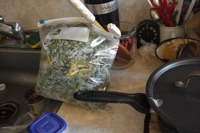 green alternatives to ziploc bags
