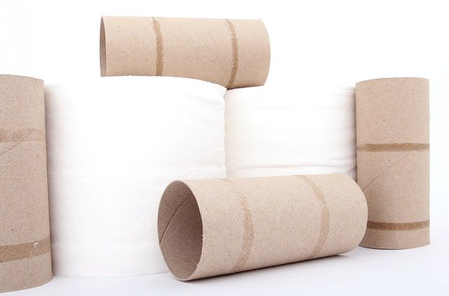 fastest dissolving toilet paper that wont clog pipes
