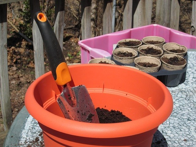 cheap containers to grow vegetables